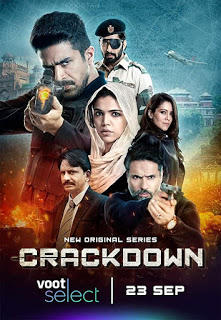 All information about the new Crackdown Web Series
